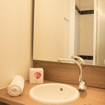 Salle d'eau appartement 2 pièces Les Orres