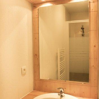 Salle d'eau appartement 3 pièces Les Orres